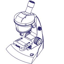 14 fluid analysis